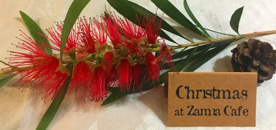 Christmas at Zamia